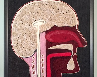 """Bisected Human Head–A Study in Wool (20"""" square)"""