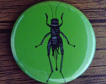 Pocket Mirror Green Cricket Insect Bug 58mm Rainbow Colourful Bright