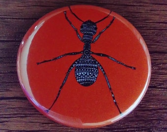 Pocket Mirror Orange Ant Insect Bug 58mm Rainbow Colourful Bright