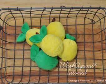 Washcloth Lemons and Limes, Baby Washcloth Lemon , WashAgami® , Instructional Video