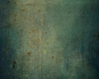 LOWEST PRICE on Etsy 4ft x 4ft  Vinyl Photography Backdrop / Rust Green Abstract Textured Wall