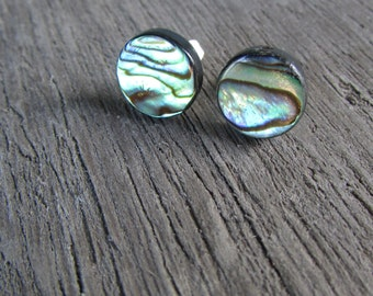 Abalone Stud Earrings - stainless steel post and ear nut - Paua Shell jewelry - 8mm 10mm or 12mm