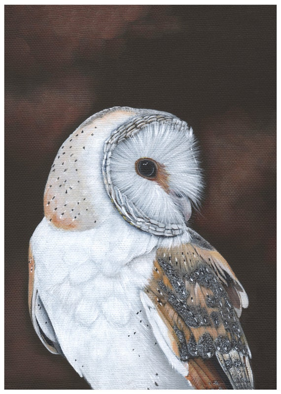 Barn Owl Painting -  Bird Art Print of owl painting 5 by 7 print BO4015, bird art, wall art, home decor