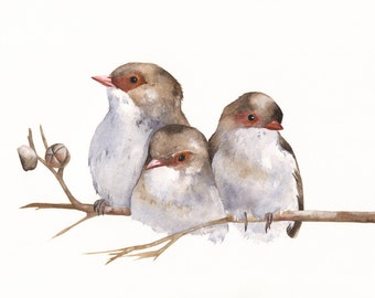 Wrens painting - W040-  bird wildlife art nature A4 size Print of watercolor painting wall art print - bird art - art print - wildlife print