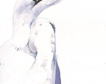 Great Egret watercolor painting- H083- bird painting A4 print, bird art, wall art, home decor wall art print - bird art print