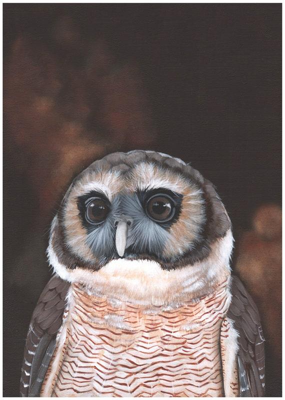 Owl painting print of acrylic painting- owl print 5 by 7, bird art, wall art, home decor wall art print - bird art print - watercolor print