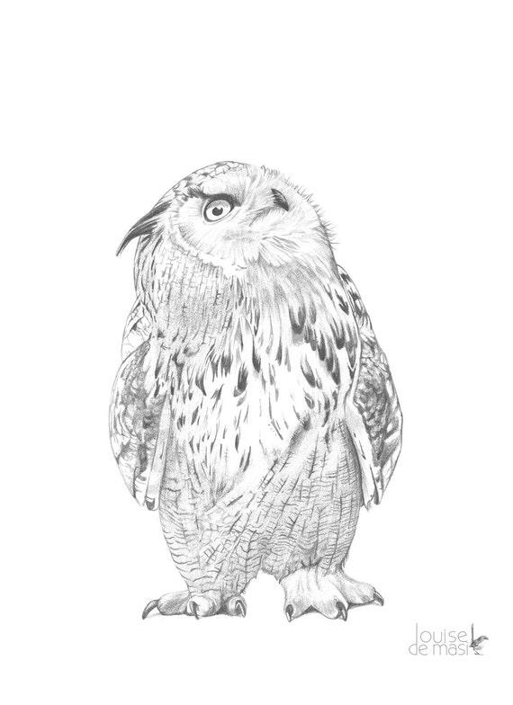 Owl illustration print, Owl pencil drawing, owl graphite drawing Print, owl drawing, Eagle Owl print, eagle Owl drawing A3 size, OD7416