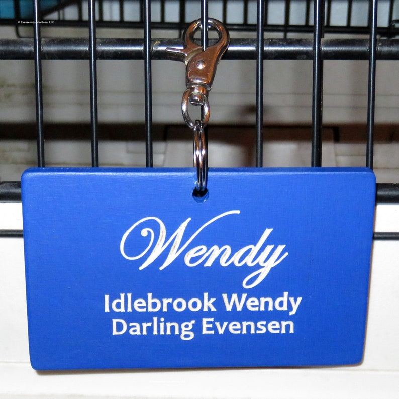 Personalized Pet Kennel Engraved Wood Name Tags  Pet Shows  image 0