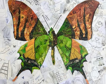 Green Butterfly Collage