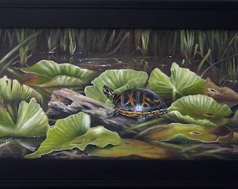 Original Oil Painting,Framed,Florida Wildlife Art,Turtle