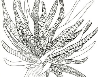 Sea Anemone Adult Coloring Page