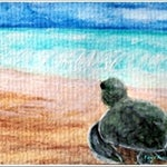 "Baby Sea Turtle 4"" x 6"""" Print ""A New Beginning"""