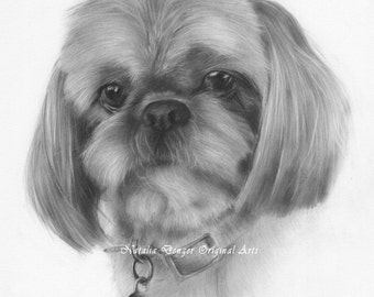CUSTOM Pet Portrait, Small Gift, Pencil Portrait, Charcoal, Black and White, Special Gift, Family Gift, Christmas Gift
