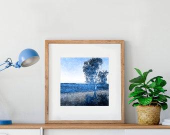 landscape photography - gum tree nature tree, australian landscape art, limited edition artwork, contemporary print, pantone classic blue