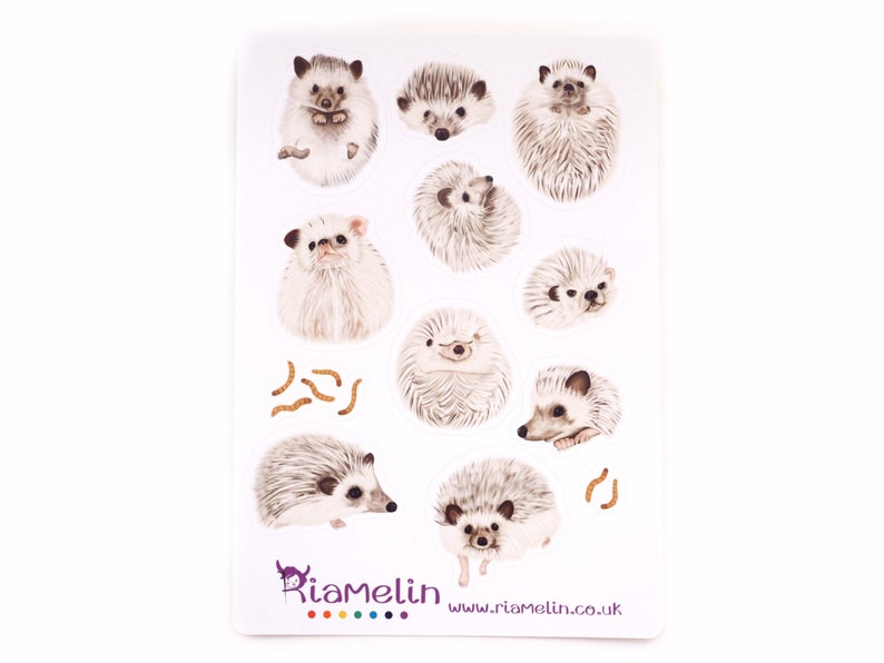 Cute african pygmy hedgehog stickers. image 0