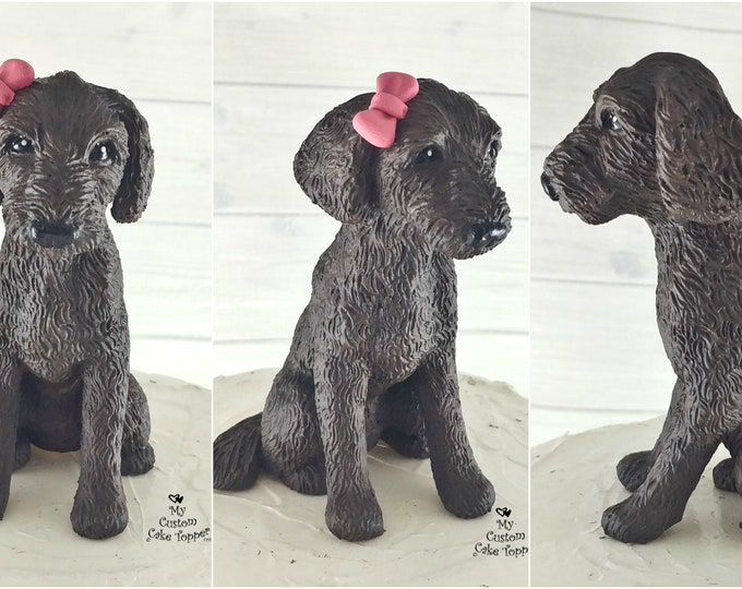 Dog Labradoodle Sculpture - Realistic Dog Figurine - Labradoodle Wedding Cake Topper