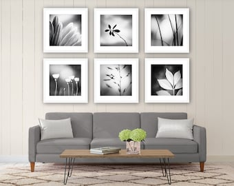 Black and White Photography Set - nature photos dark grey gray gallery wall art print set modern photography neutral fine art photograph