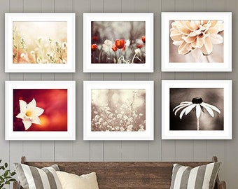 Red Brown Photography Print Set, Six Photographs 11x14, 8x10, 5x7 red brown beige cream neutral flower photos nature wall art brown red