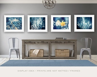 Navy Yellow Nature Photographs, 11x14, 8x10, 5x7 prints dark blue yellow white botanical photography gallery wall art set of four pictures