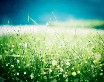 """Sparkle Photography - green blue aqua dew nature sparkly bokeh grass abstract print teal modern photo, 11x14, 8x10 Photograph, """"Morning Dew"""""""