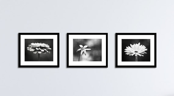 Black and white flower photography set three floral prints
