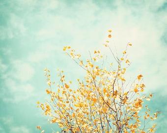 "Nature Photo Print - Woodland Wall Art Tree Print Yellow & Turquoise Wall Decor Modern Wall Prints Living Room Decor ""Gentle Whisper"""