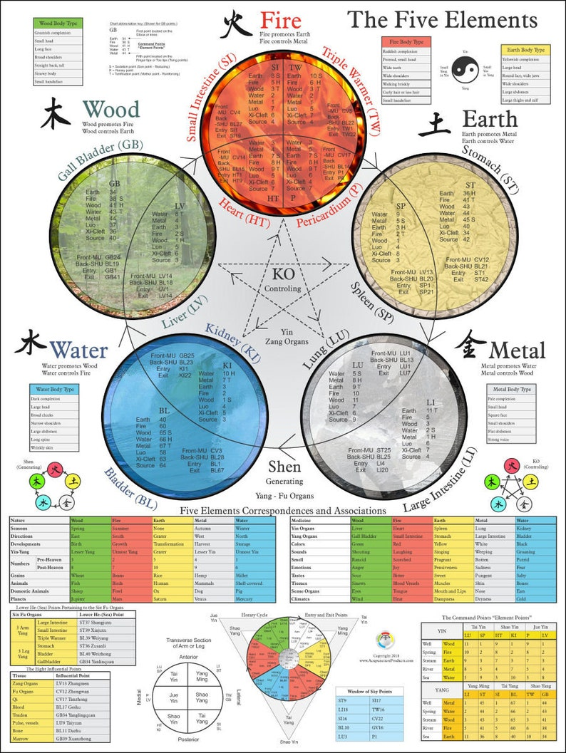 Five Elements Acupuncture Poster 18 X 24 image 0