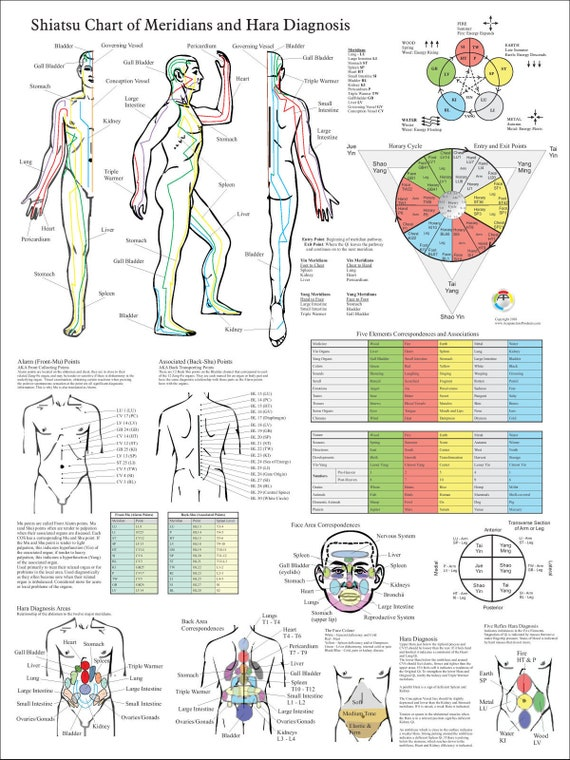 Shiatsu Chart of Acupuncture Meridians and Hara Diagnosis   EtsyEtsy