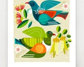 Tui and Kereru in flight, New Zealand, print, NZA87