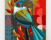 New Zealand Tui in the Flax, print, NZA7