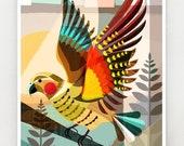 New Zealand, Native Kea, print, NZA65