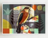 Landscape, New Zealand, Karearea, Falcon, print, NZA27