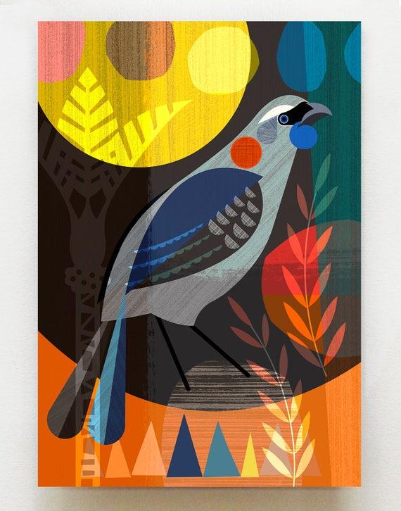 New Zealand Kokako bird NZA54