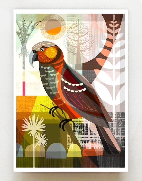 New Zeraland Kaka bird, NZA130