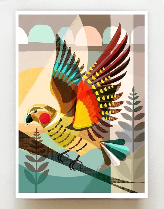 New Zealand Native Kea, print, NZA65