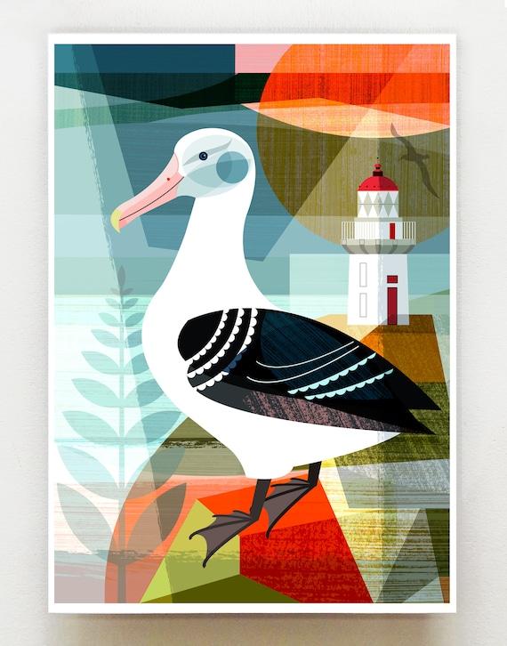 New Zealand Royal Albatross, print, NZA103