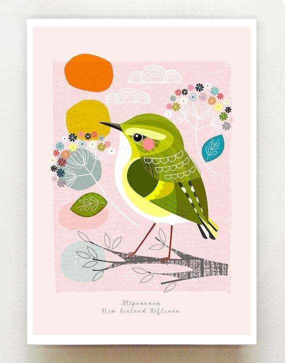 Small birds of New Zealand, Titipounamu, Rifleman, print, NZA107