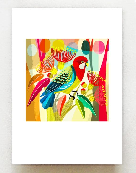 Rosella, print