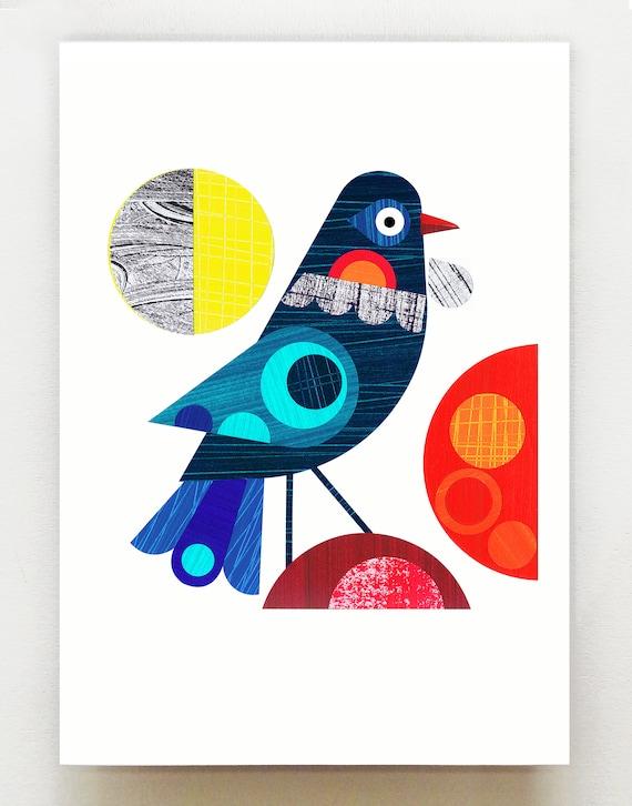 New Zealand Tui, bird,  print, NZA52