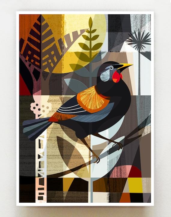 New Zealand Saddleback,print, NZA88
