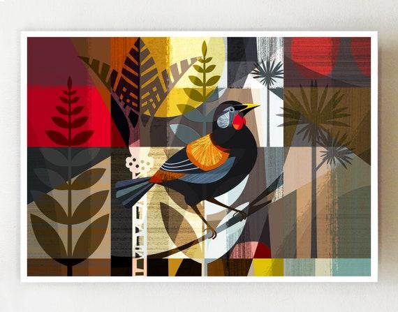 New Zealand Saddleback (native bird) print, NZA92