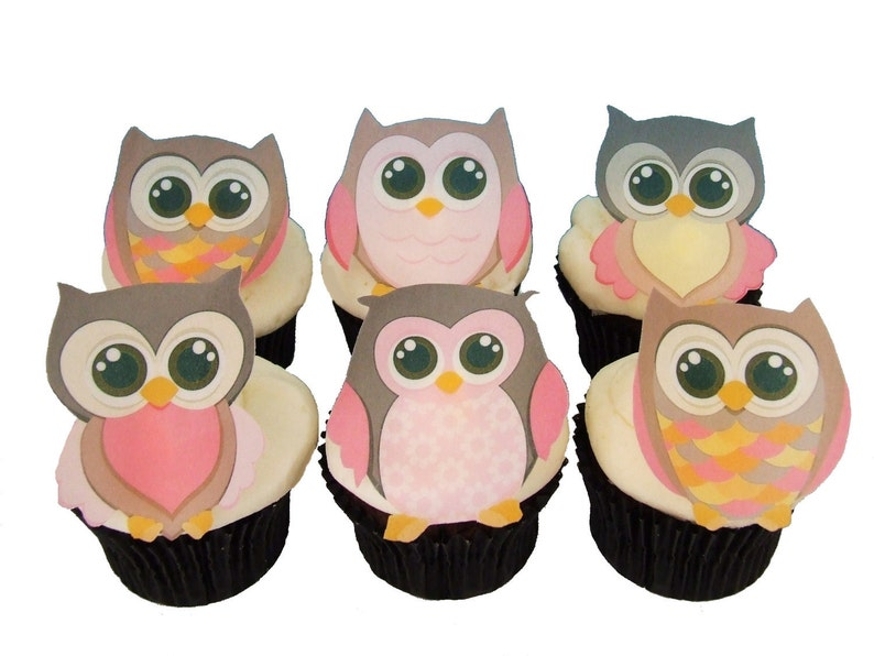 Owl Cake Topper 12 Edible Cupcake Decorations Birthday