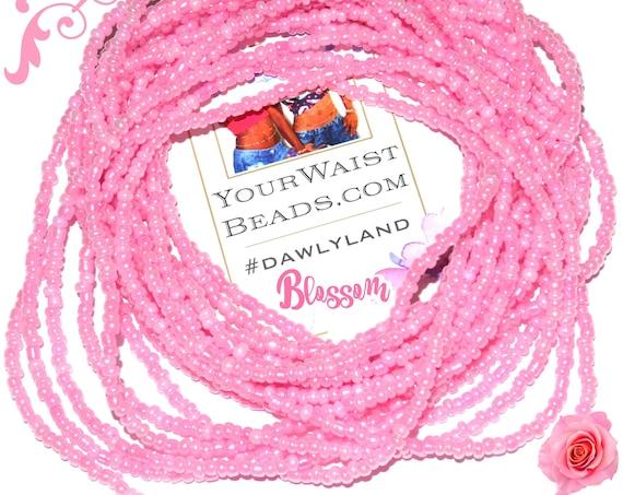 Waist Beads & More ~ Blossom ~ Bracelet Anklet or #Beadkini
