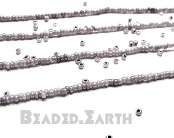 Wolfe • Tiny • Waist Beads & More