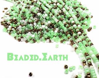Aiya • Waist Beads & More