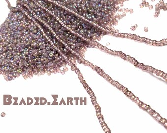 Sugarplum • Tiny • Waist Beads & More