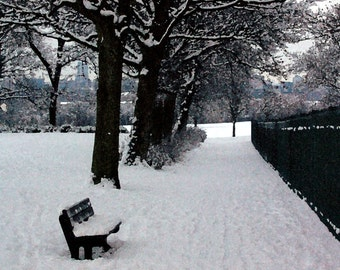 Pack of 5 Christmas Cards 'A Cold Wait' - Winter Snow Scene, Holidays, Xmas Pack Set, Corporate Christmas Cards, Christmas Photography