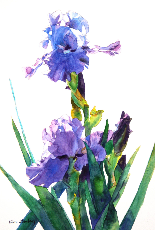 Purple Bearded Iris Flower Painting Original Matted Watercolor Etsy