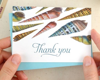 Seashell Thank You Cards - Beach Thank You Cards - Set of 10 thank you notes - Made in the USA - Recycled Paper + matching envelopes