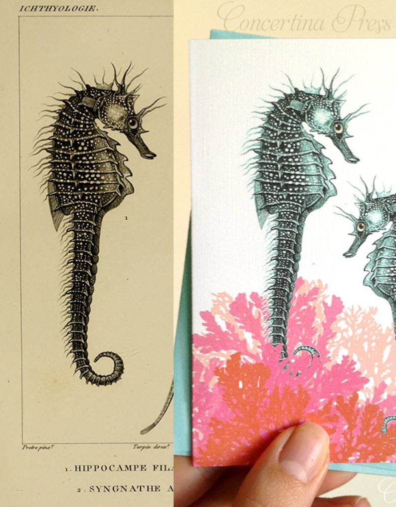 Seahorse Notecards Set of 8 with Envelopes